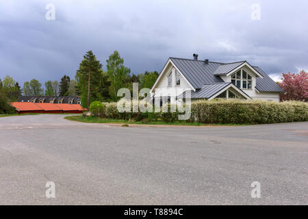 Typical swedish modern middle class white painted wood house with metal roofing surrounded by lush blooming hedge and cherry blossom in suburban neighborhood - Stock Photo