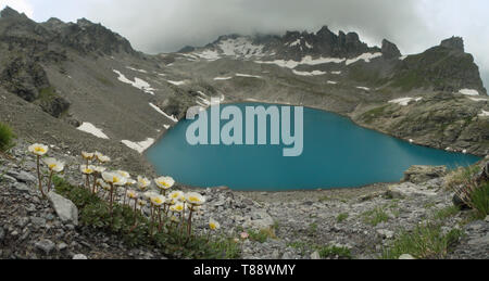 Wildsee, teal glacial lake  on the Pizol, Swiss Alps - Stock Photo