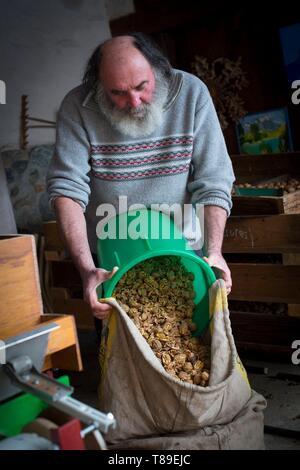 France, Haute Savoie, Seyssel, Berger oil mill, bagging broken walnuts - Stock Photo