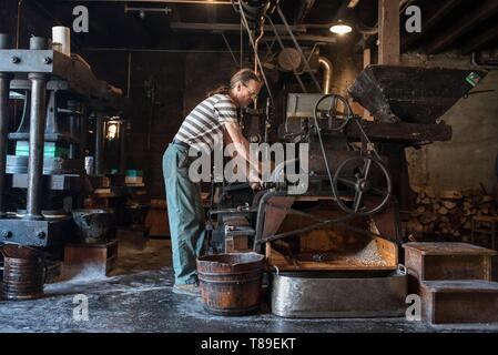 France, Haute Savoie, Seyssel, Berger oil mill, Michel monitors the grinding of kernels - Stock Photo