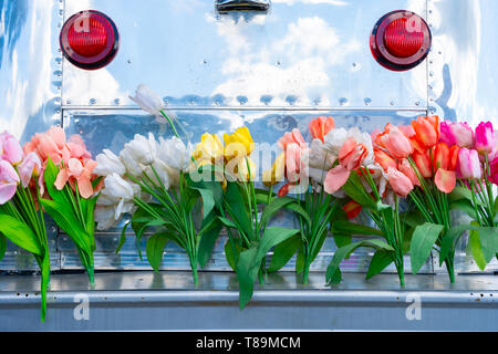 Vintage travel trailer camper with aluminum siding and a tail gate bumper covered in tulip flowers, depicting the hippie era or a fun lifestyle. - Stock Photo