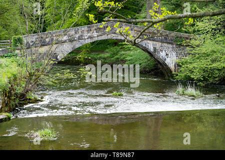 Stone bridge over the River Manifold at Ilam Hall, Ilam, Staffordshire Peak District, UK - Stock Photo
