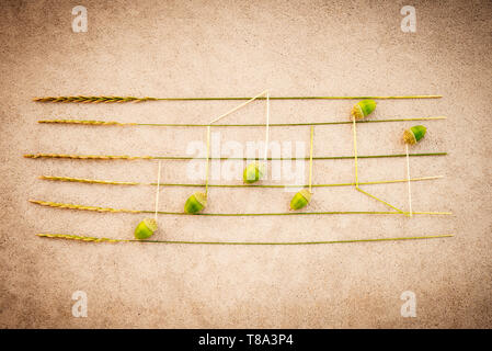 Sounds of nature. Music notes made of green acorns and wild grass, on retro style grungy background. - Stock Photo