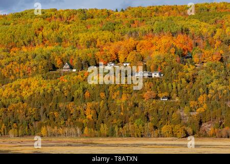 Canada, Province of Quebec, Charlevoix region, Baie-Saint-Paul, the Gouffre River tributary of the left bank of the St. Lawrence River at low tide - Stock Photo