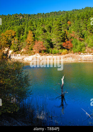 Dead tree in Tsivlou lake at the banks of Helmos mountain in Peloponnese, Greece. Vivid nature landscape. - Stock Photo