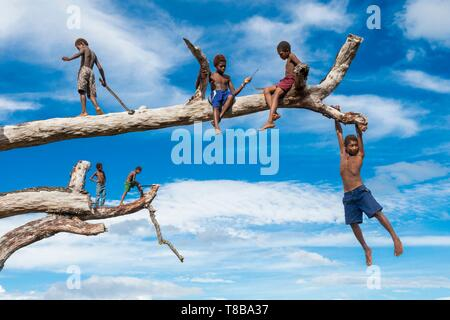 Papua New Guinea, New Britain island, West New Britain province, Talasea district, Kimbe area, Tamuniaï village, kid playing in the trees - Stock Photo