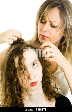 Mother checking child's head for lice - louse on head, curly hairs - white background - Stock Photo