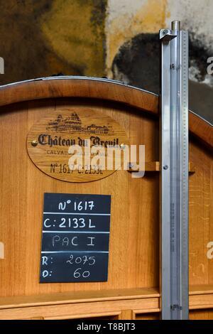 France, Calvados, Pays d'Auge, Le Breuil en Auge, Chateau du Breuil producer of Calvados AOC Pays d'Auge, barrels in aging cellars - Stock Photo