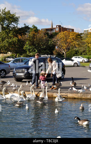 Couple with young child feeding birds at Poole Park, Poole, Dorset - Stock Photo
