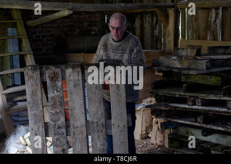man using a chainsaw in a barn to cut up old wooden pallets for fuel in preparation for the approaching winter season zala county hungary - Stock Photo