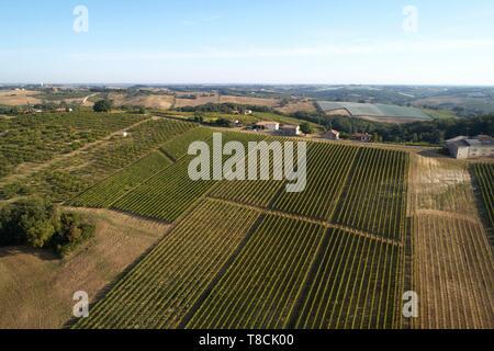 France, Tarn et Garonne, Moissac, Gilbert Lavilledieu, grape producer, Chasselas, general view of the estate, aerial view - Stock Photo