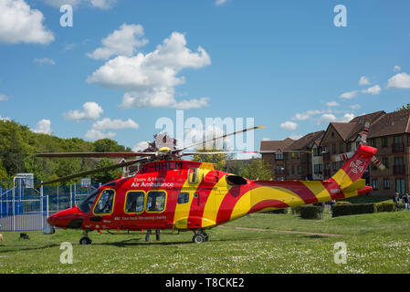 An Essex & Herts air ambulance helicopter landing in Hertford, UK. The helicopter landed in Perrett Gardens. - Stock Photo