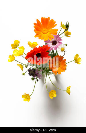 Beautiful bouquet of wild flowers, isolated on white background - Stock Photo