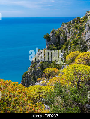Scenic mediterranean seascape with cliffs at Palinuro, Cilento, Campania, southern Italy. - Stock Photo
