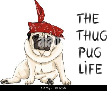 hand drawn vector illustration of thug pug puppy dog, sitting down with red western scarf bandana and text - Stock Photo