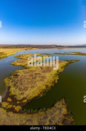 Kenya, Soysambu conservancy, Elmenteita lake from a drone, lesser flamingo (Phoeniconaias minor) - Stock Photo
