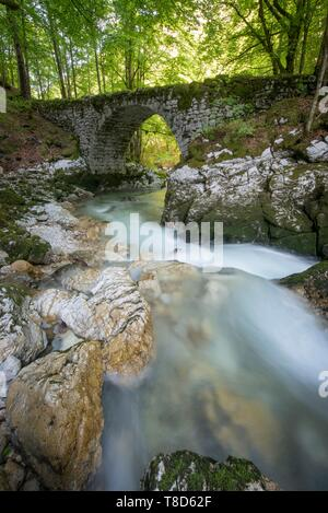 France, Ain, the village of Chezery Forens at the gates of the Jura, the old road and stone bridge on the torrent of Valserine - Stock Photo