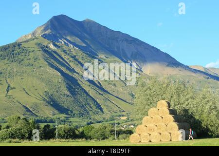 France, Hautes Alpes, Haut Champsaur, Ancelle, hiker - Stock Photo
