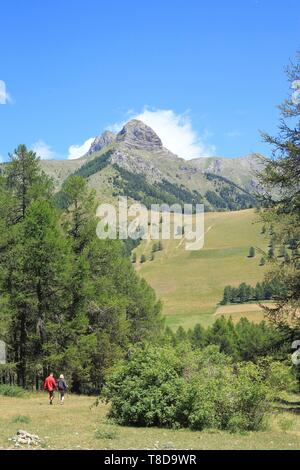 France, Hautes Alpes, Haut Champsaur, Ancelle, couple of hikers - Stock Photo