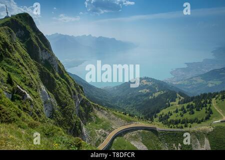 Switzerland, Canton of Vaud, Montreux, the cogwheel train bound for the rock of Naye, summit on the left, in the pastures of La Perche and Lake Geneva - Stock Photo