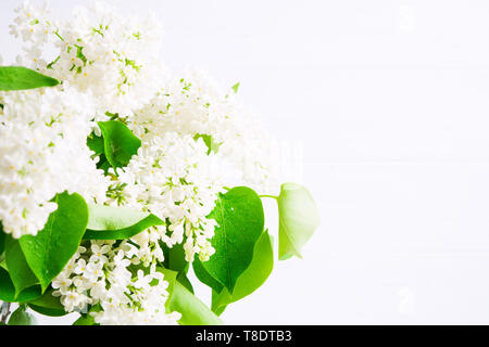 Bouquet of white lilac flowers in vase on white background. Copy space. Spring and summer blooming concept. Interior decoration. Soft focus - Stock Photo