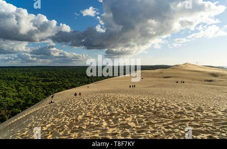 France, Gironde, Bassin d'Arcachon, La Teste-de-Buch, Pyla-sur-mer, Dune du Pilat - Stock Photo