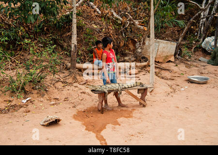 Boca de valeria, Brazil - December 03, 2015: boys selling crocodile bound to wooden bench on natural background. Poverty lifestyle and childhood concept - Stock Photo
