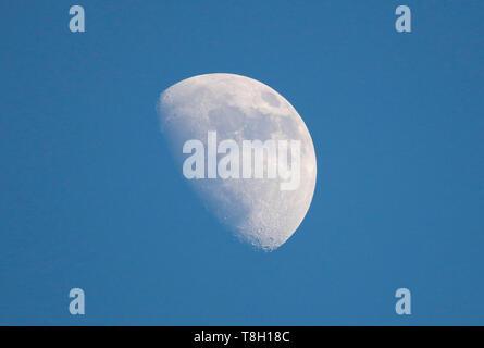 Mond, Berlin  (nur fuer redaktionelle Verwendung. Keine Werbung. Referenzdatenbank: http://www.360-berlin.de. © Jens Knappe. Bildquellennachweis: Jens - Stock Photo