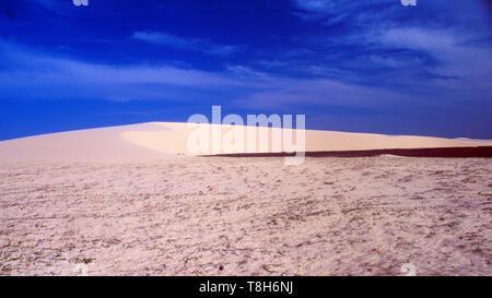 Brazil: The desert vegetation of the giant sand dunes around Jericoacoara in Céara - Stock Photo