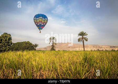 Hot air balloons flying over city, Luxor, Egypt - Stock Photo
