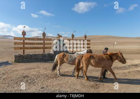 Mongolia, Hustai National Park, where the Przewalski Horse (Equus caballus przewalskii or Equus ferus przewalskii), was released from 1993 in Khustain Nuruu National Park, entrance of the park - Stock Photo