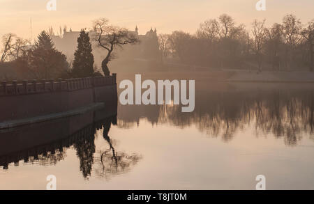 Odra river and tree on Ostrow Tumski in the morning fog. Sunrise over river. Wroclaw. - Stock Photo
