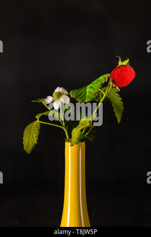 Berry with flower and fruit in a yellow vase - Stock Photo