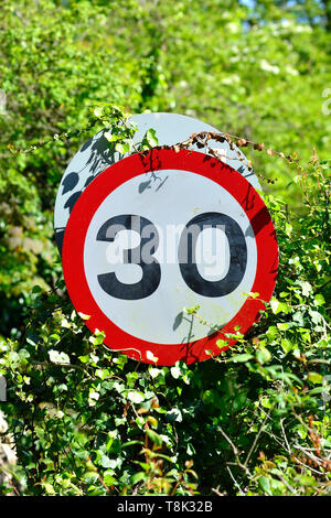 30 Mile per hour speed limit sign in a hedge, Boughton Monchelsea village, Kent, England. - Stock Photo