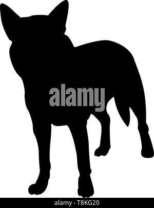 Australian Dog Silhouette. Smooth Vector Illustration. - Stock Photo
