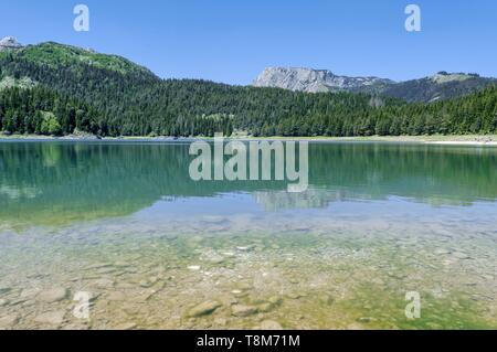 Montenegro, region of Durmitor, Black Lake in Durmitor National Park - Stock Photo