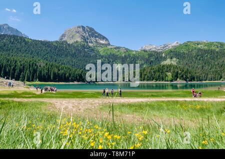 Montenegro, Durmitor region, Black Lake in Durmitor National Park - Stock Photo