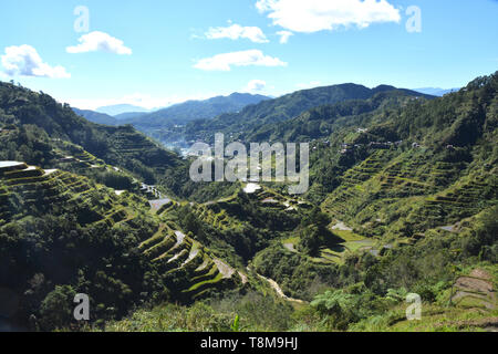 Mountain Valley with Rice Fields on Terraces, irrigated (Ifugao,  Banaue, Philippines). - Stock Photo