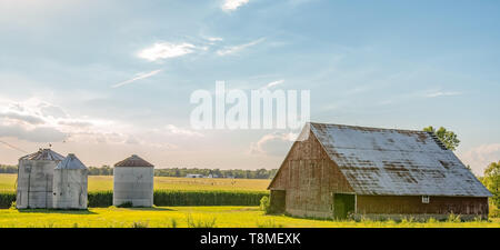 Country landscape with weathered barn and grain bins in the foreground and corn field, irrigation equipment and other farm buildings in the background - Stock Photo