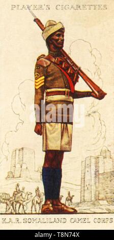 'King's African Rifles: Somaliland Camel Corps', 1936. Creator: Unknown. - Stock Photo