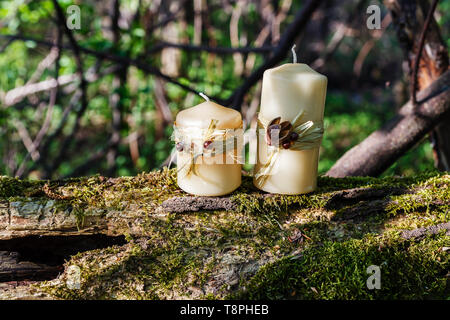two wax candles on an old log in the forest. - Stock Photo