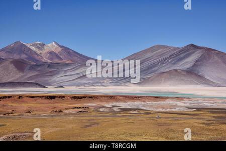 Surreal landscape at the Salar Aguas Calientes, Atacama Desert, Chile - Stock Photo