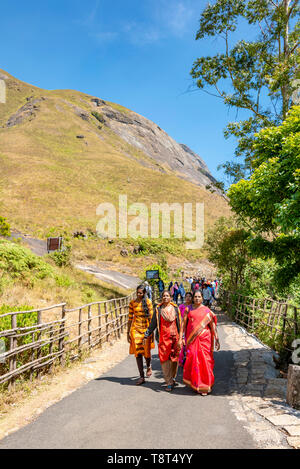 Vertical view of a group of people dressed in sarees walking along a trail in Eravikulam National Park in Munnar, India. - Stock Photo