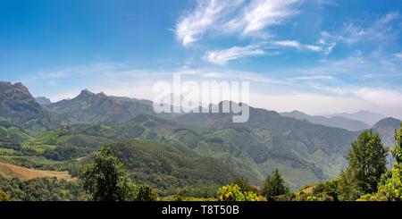 Horizontal panoramic view across the Kanan Devan Hills in Munnar, India. - Stock Photo