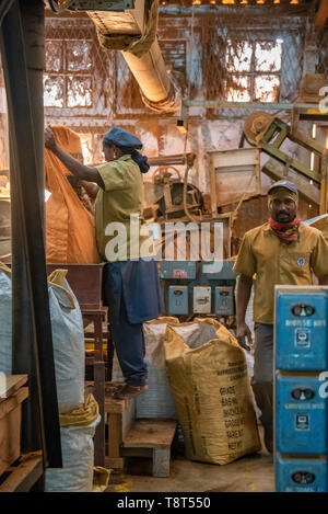 Vertical view of workers at a tea factory in Munnar, India. - Stock Photo