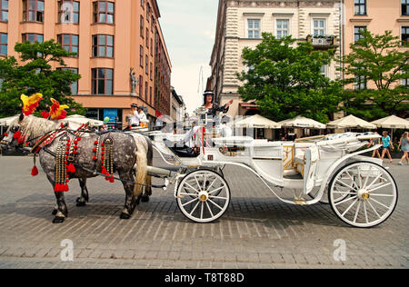 Krakow, Poland - June 04, 2016: rider woman invite tourists to horse carriage ride on city street on urban background. Vacation, tour, travelling, discovery concept. - Stock Photo
