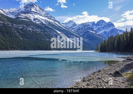Hiking around Beautiful Blue Glacier Lake in Banff National Park with Distant Snowcapped Mountain Peaks Springtime Landscape Scenic View - Stock Photo