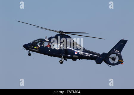 ZJ164, an Aerospatiale Dauphin HU1 operated by the Royal Navy, at Prestwick Airport during Exercise Joint Warrior 19-1. - Stock Photo