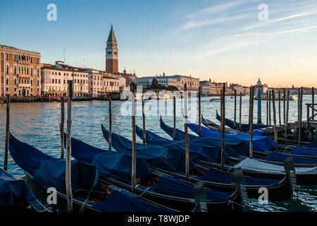 Gondolas, the traditional venetian rowing boats, are tied up at the Grand Canal, Canal Grande, St Mark's Campanile, Campanile di San Marco in the dist - Stock Photo
