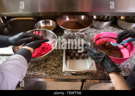Theme cooking chocolates truffle. Close-up hand Young Caucasian woman and man cook with tattoo and in uniform prepares, makes round balltake the sweet - Stock Photo